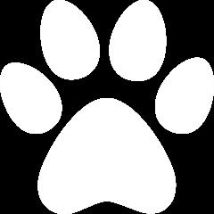 iconmonstr-cat-7-240